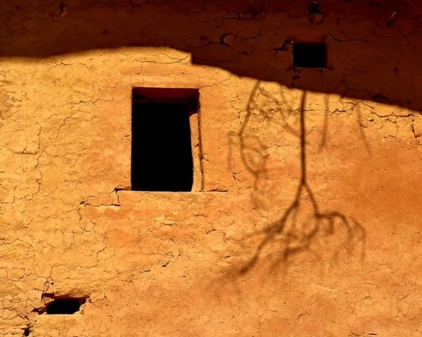 A Sombra - 1° Ensaio