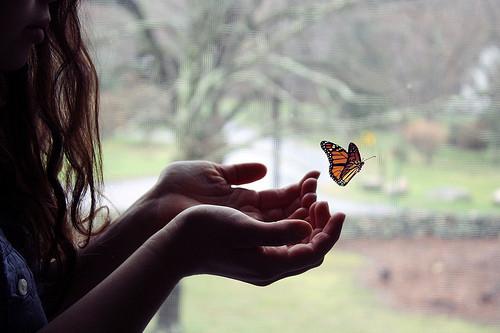 Garota observando uma borboleta monarca