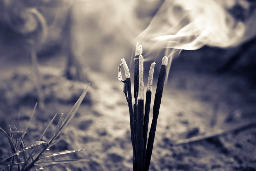 A vida é a prova da existência do espirito